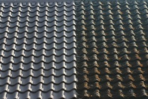 Thermal Roof Coating Difference